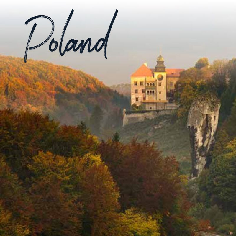 Product image for Poland 2022 image number 0