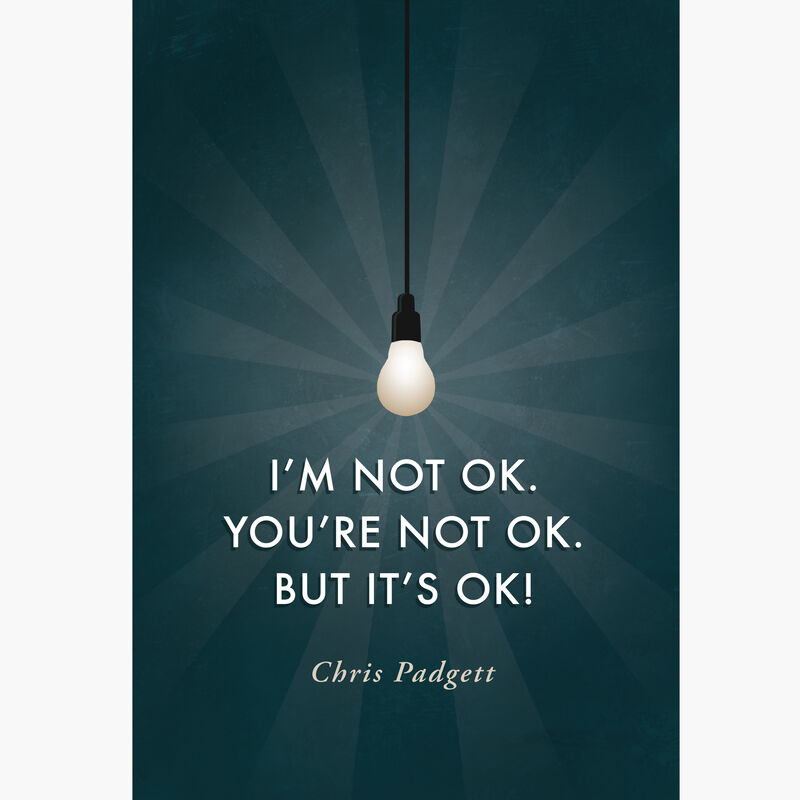 Product image for I'm Not OK. You're Not OK. But It's OK. image number 0