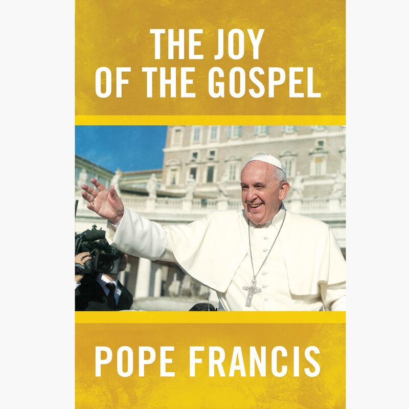 Joy of the Gospel image number 0